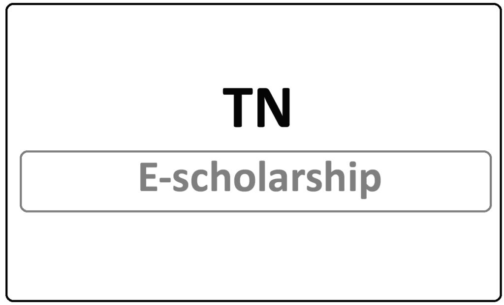 TN E-scholarship 2021 Status Check